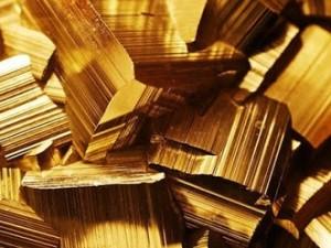 pezzi d'oro